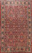 Antique Vegetable Dye Sultanabad Persian Area Rug 10x14