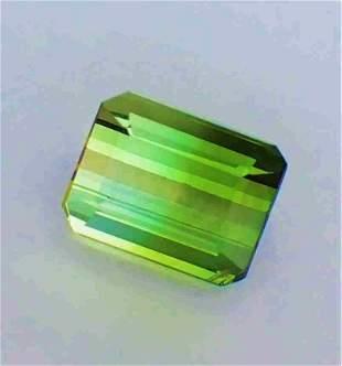 Bi-Color Tourmaline  - 3.45 ct