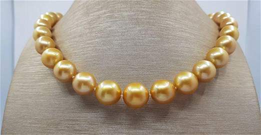Large 11x14,7mm 24k Golden Saturation South Sea Pearls