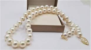 14 kt. Yellow Gold - Top grade AAA 8.5x9mm Akoya Pearls