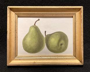 1844 green pears hand colored engraving
