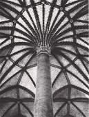 JEAN DIEUZAIDE - Le palmier des Jacobins, 1953