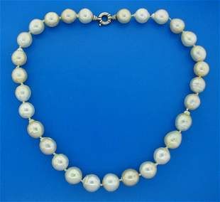 South Sea Pearl Strand NECKLACE 13-15 mm 19.5 inches