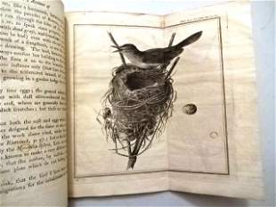 1785 Philosophical Transactions Volcano New Bird