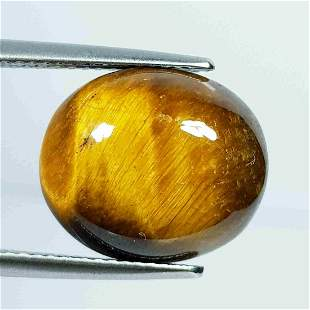10.65 ct Natural Tiger Eye