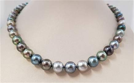8.3x11mm Round Multi Coloured Tahitian Pearls - 14 kt.