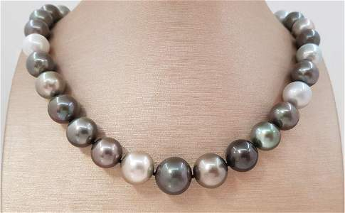 Large 11x15mm Round Multi Coloured Tahitian pearls
