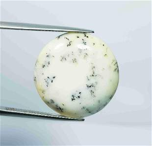 17.54 Ct Natural Dendrite Opal Round Cabochon