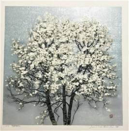 Joichi Hoshi: Magnolia