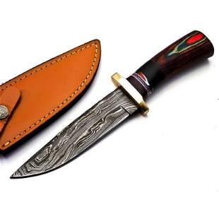 Bowie hiking damascus steel knife handmade wood brass