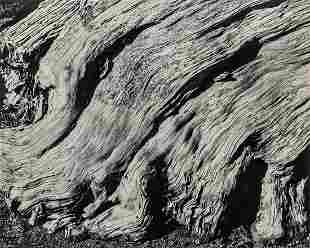 EDWARD WESTON - No. 11 Cypress, Point Lobos, 1929