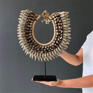 Decorative Shell Necklace on custom stand - Shells,