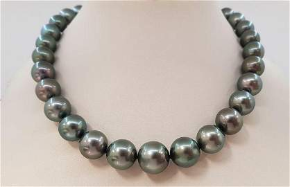 11x14.8mm Large Bright Peacock Tahitian Pearls Tahitian
