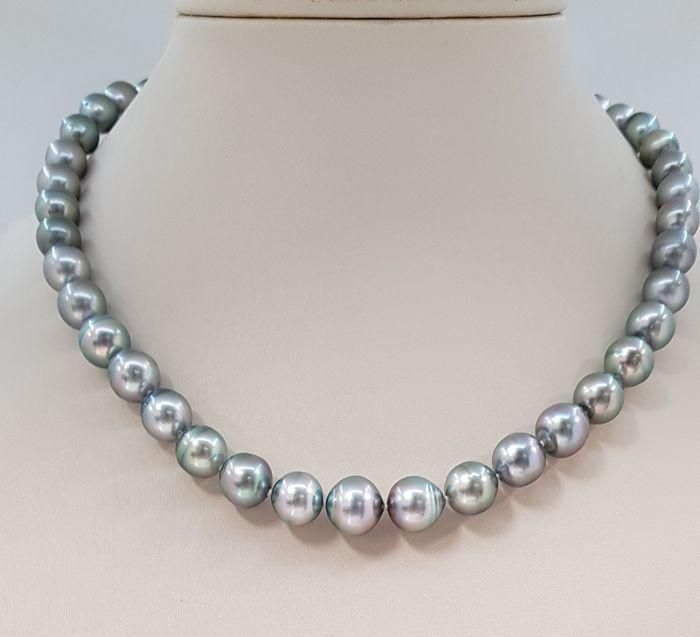 8.4x11mm Silvery Green Tahitian Pearls - 14 kt. White