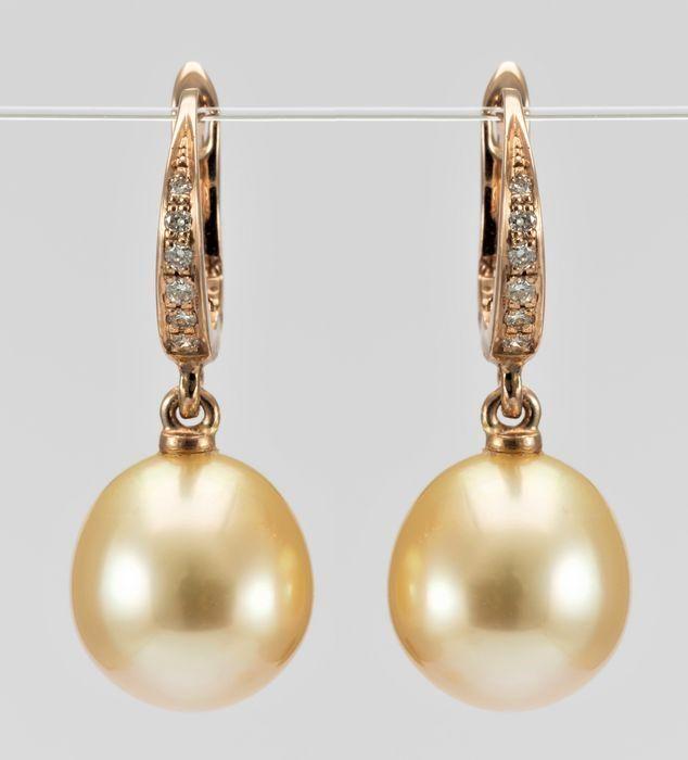 10x11mm Golden South Sea Pearl Drops - 14 carati Oro
