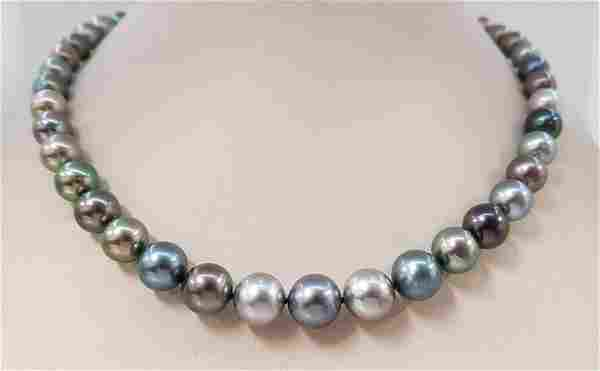 8.2x11,5mm Round Multi Coloured Tahitian Pearls - 14