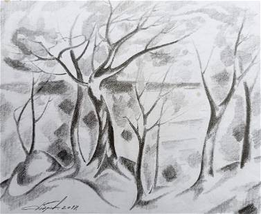 Abstract pencil painting Dnieper Peter Tovpev