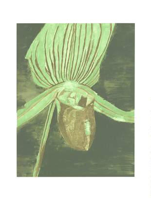 Luc Tuymans: Orchid