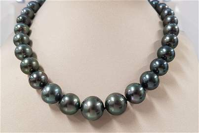 11x15mm Large Bright Peacock Tahitian Pearls - Necklace