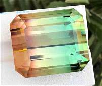 130 Carats Brillint Bio Color Tourmaline from