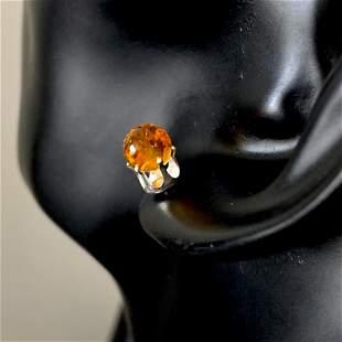 Staggering Amber Earrings