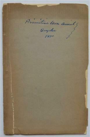 1890 PRIMITIVE URN BURIAL by SNYDER HISTORICAL NATIVE