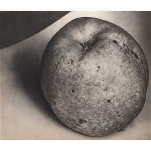 EDWARD STEICHEN - Apple
