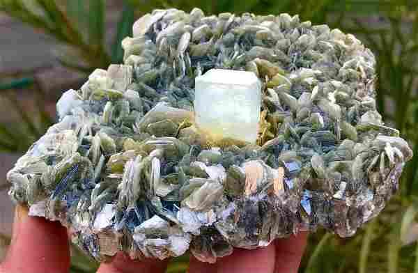 1358 C.T Blue Gemmy Aquamarine Crystal w/ Muscovite