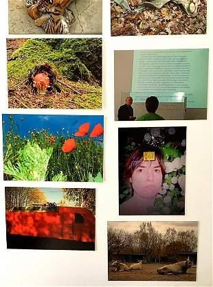 Michaela Eichwald Ten Top Photographs 2015