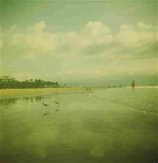 Jonathan Dy: Puerto Vallarta - Signed - Ed.1/15