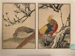 Imao Keinen, Phoenix: Male and Female