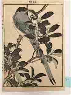 Imao Keinen, Blue bird with long tail rest on tree