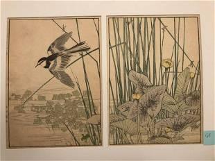 Imao Keinen, Bird fly over the lotus plants