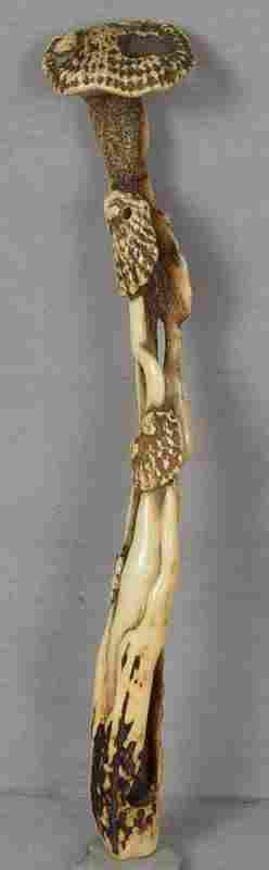 19c staghorn ASAKUSA pipe case KISERUZUTSU Immortality