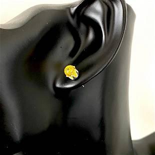 Alluring Amber Earrings