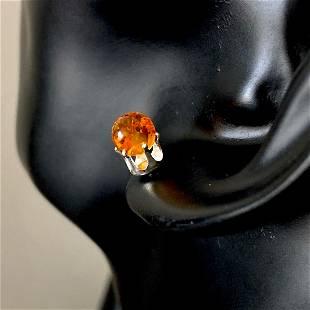 Fascinating Amber Earrings