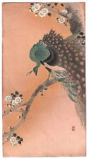 Artist: Ohara Koson. Subject: Green Peafowl perched on