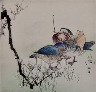 Kogyo: Ducks
