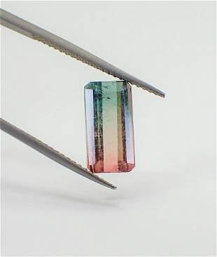 Bi-Color Tourmaline Certified - 3.07 ct