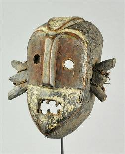 BOA Superb War & Dance Mask Congo DRC African Tribal