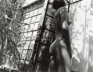 MANUEL ALVAREZ BRAVO - Le Tela De La Arana, 1989