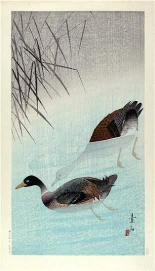 Shunyo: Mandarin Ducks