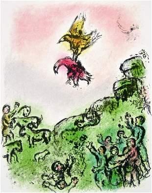 The Goshawk & the Dove