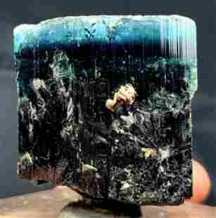 Natural Blue Cap Tourmaline Crystal Terminated and