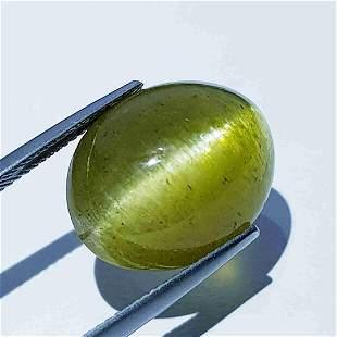 22.65 ct Natural Apatite cat's Eye