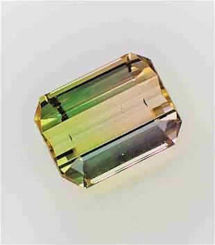 Bi-Color Rare Tourmaline Certified - 7.82 ct