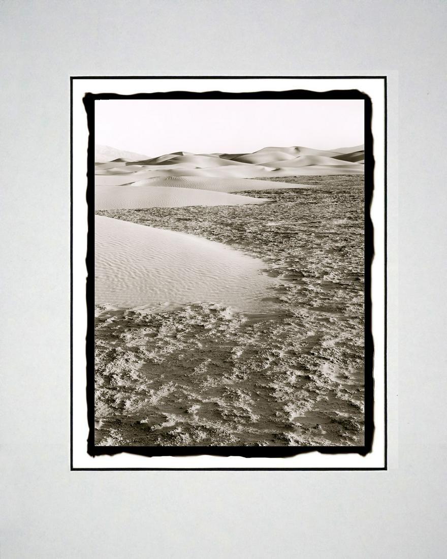 Ludo Leideritz - Dunes' Edge