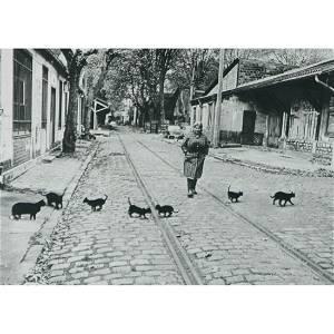 ROBERT DOISNEAU - Cats, Bercy, 1974