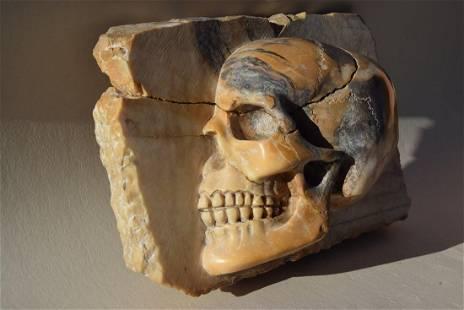 Cranio metà