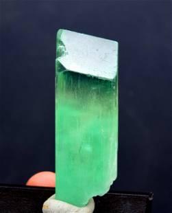 49 Gram Green Kunzite Crystal Undamaged and Double